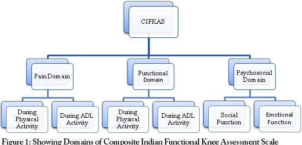 Domains of Composite Indian Functional Knee Assessment Scale
